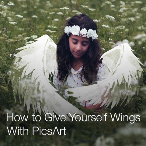 how to add wings to photo