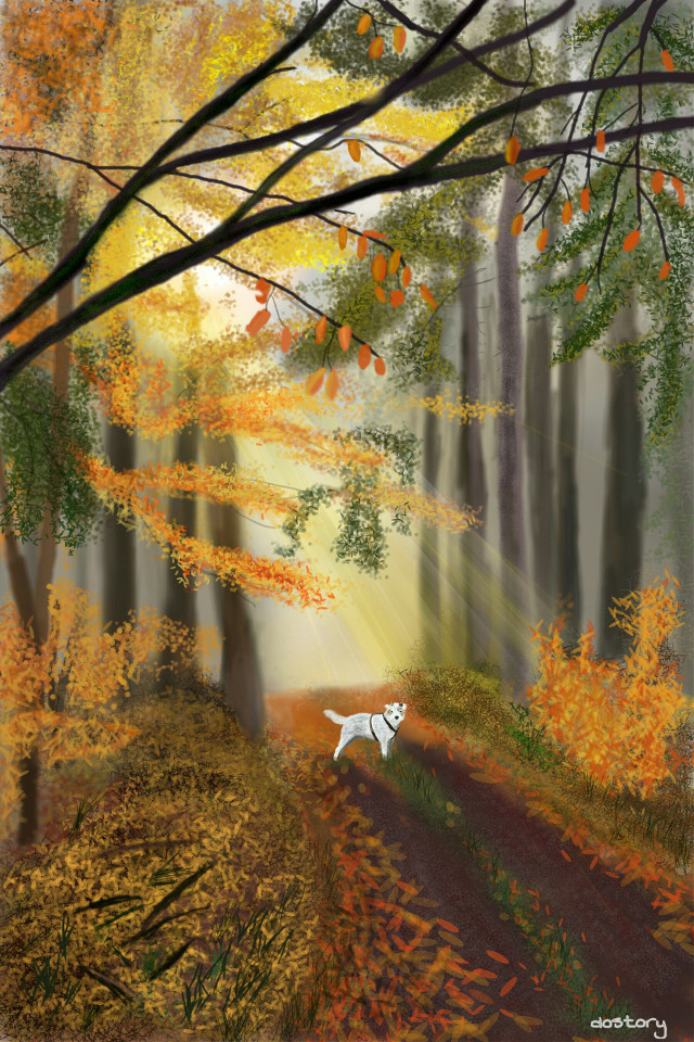 #drawing #autumn  #forest   Walk with dog