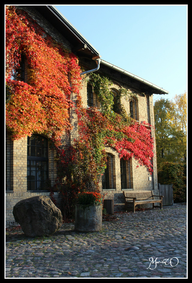 Beautiful autumn #autumn#fall#colorful#building #photography