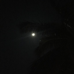 dark nofilter night fullmoonnightcore likes