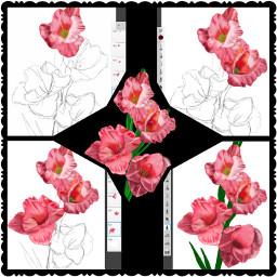 digitaldrawing digitalart flowers art