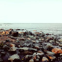 sea beach water stones sand