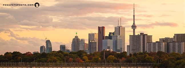 toronto travel skyline cityscape