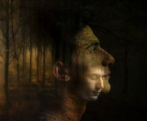 madewithpicsart doubleexposure d_expo nature portrait
