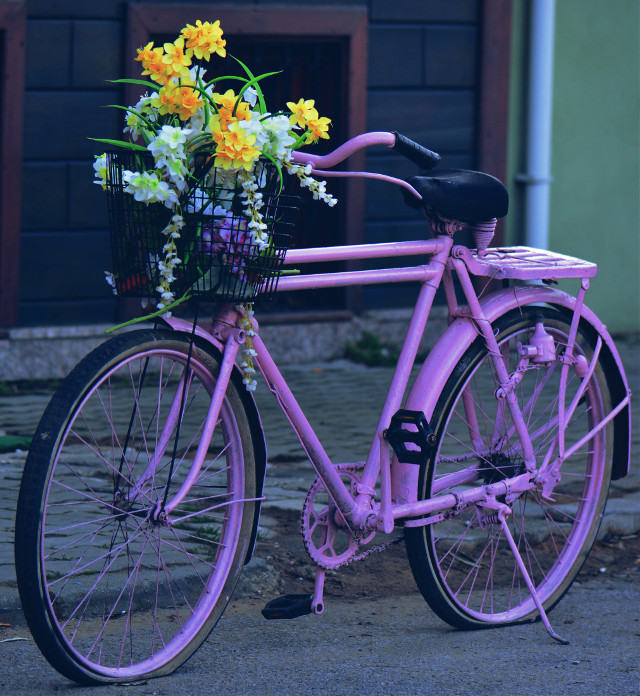 #bycicle #pink #flowers #travel #turkey #photography