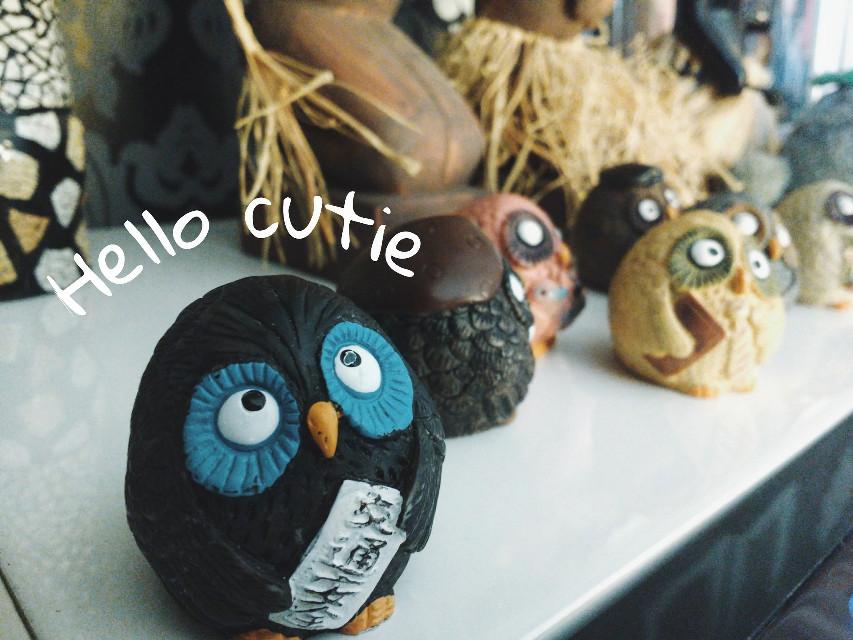 #cute#owls