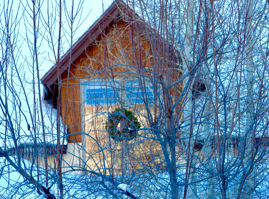 Of the Season🌲 #art#Christmas#house #wreath
