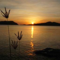 beach photography nature sunset