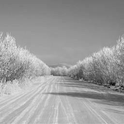 freetoedit winter nature road