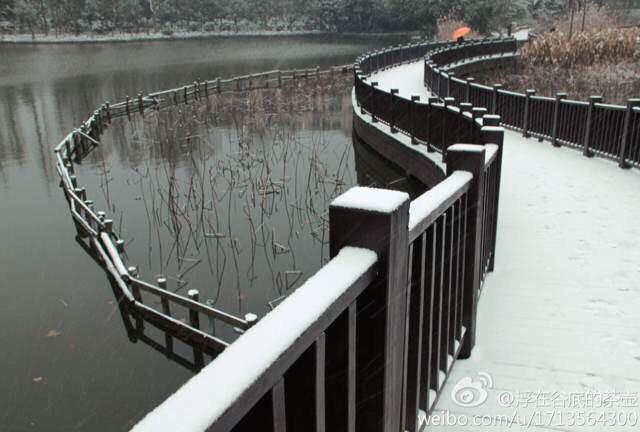 #landscape #snow