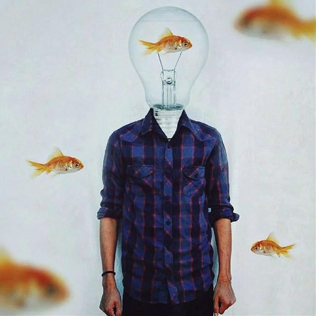 -Fish 🐠🐠