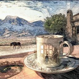 ftemyview coffe landscape inspiration