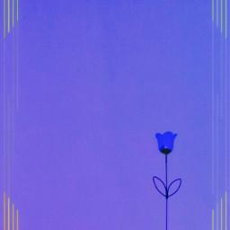 keepitsimple purple blue flower border