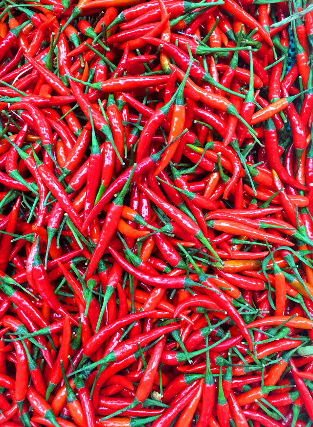 #chilipepper #interesting #red  #iphonephotography #shopping #life #fire #freetoedit