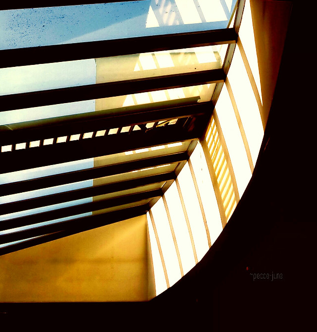 #architecture  #lines  #symetric