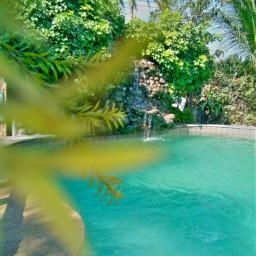 pool resort summer swimmingtime relaxingday