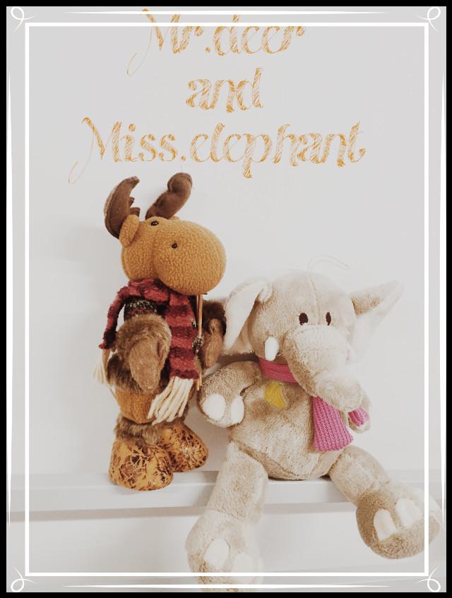 #Mr.deer #Miss.elephant #forever