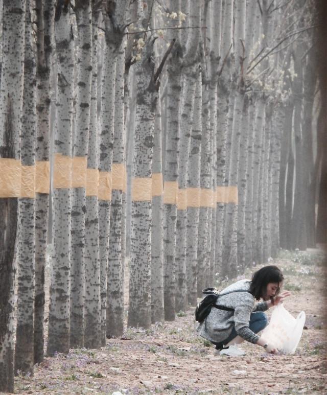#streetphotography #beijing #spring     #FreeToEdit
