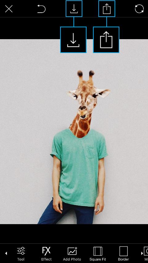 89fe2094 Animal Selfie - Tutorials - PicsArt