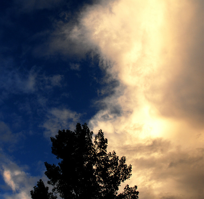 Clouds  with Tree. . #photography