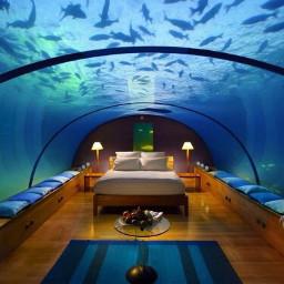 seaeffect room