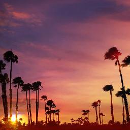 beach colorful colorsplash landscape sunset