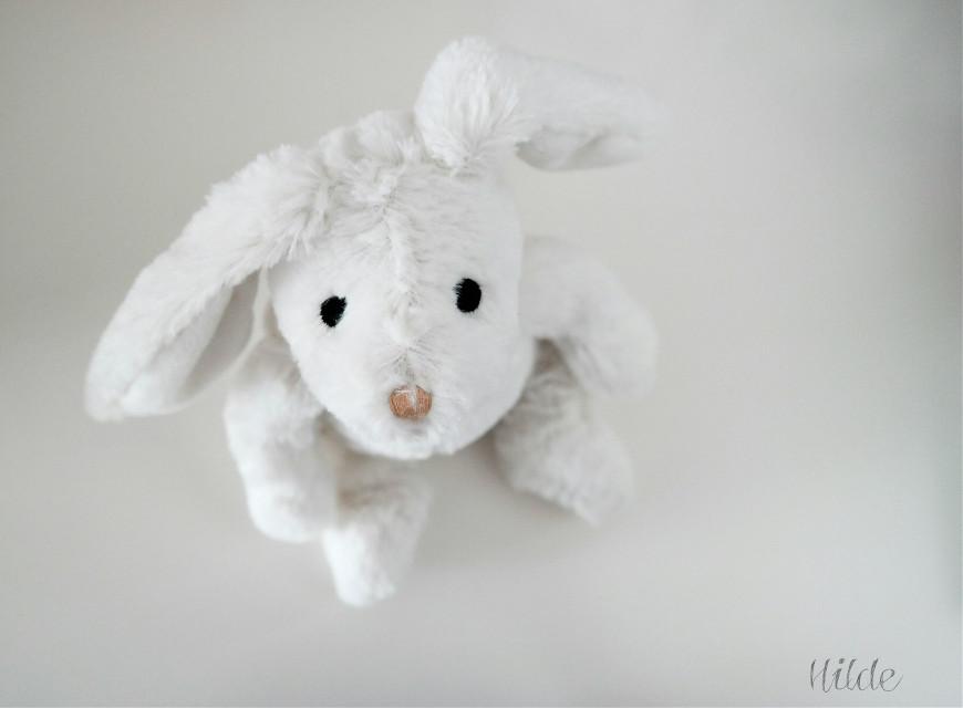 Hello 🐰☺️  #rabbit  #toy #white