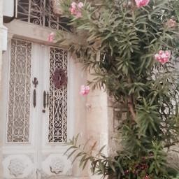 flower old