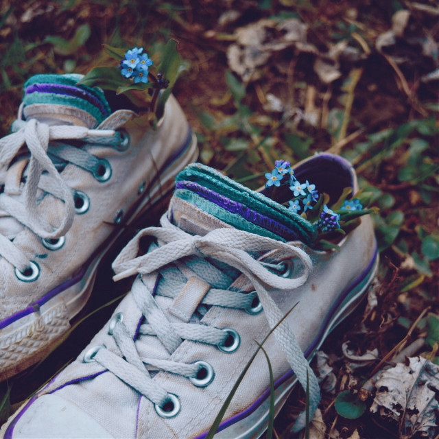 #nature #converse #flowers #interesting #shoes #photography #spring