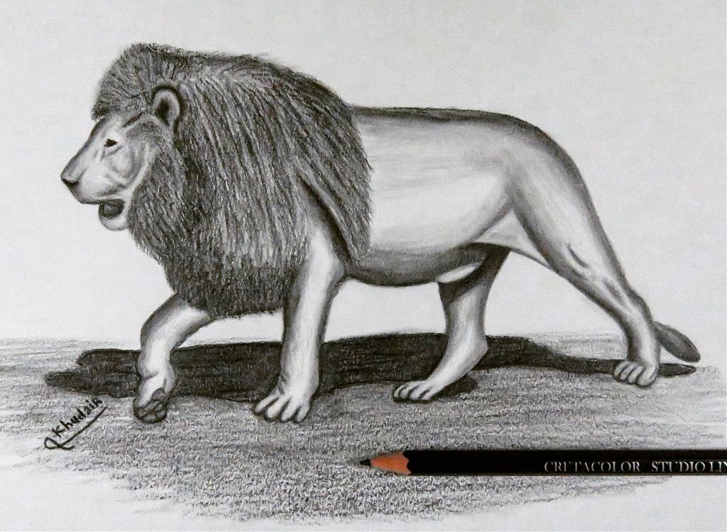 #Drawing #artist #art #arts #artsy #artwork #drawings #markers #pencil #painter #lion #cute