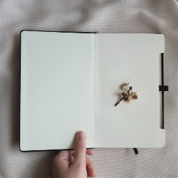freetoedit minimal notebook hand flower