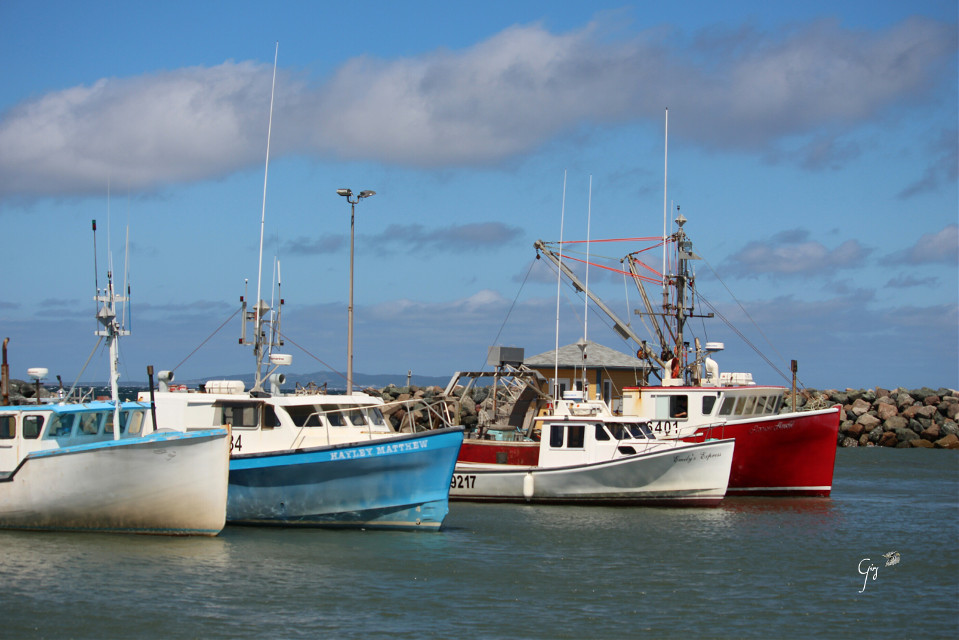 Good morning Good friends   For #nettesdailyinspiration  #summerplace   #boat  #fishingboats  #colorful  #summer  #travel  #canada