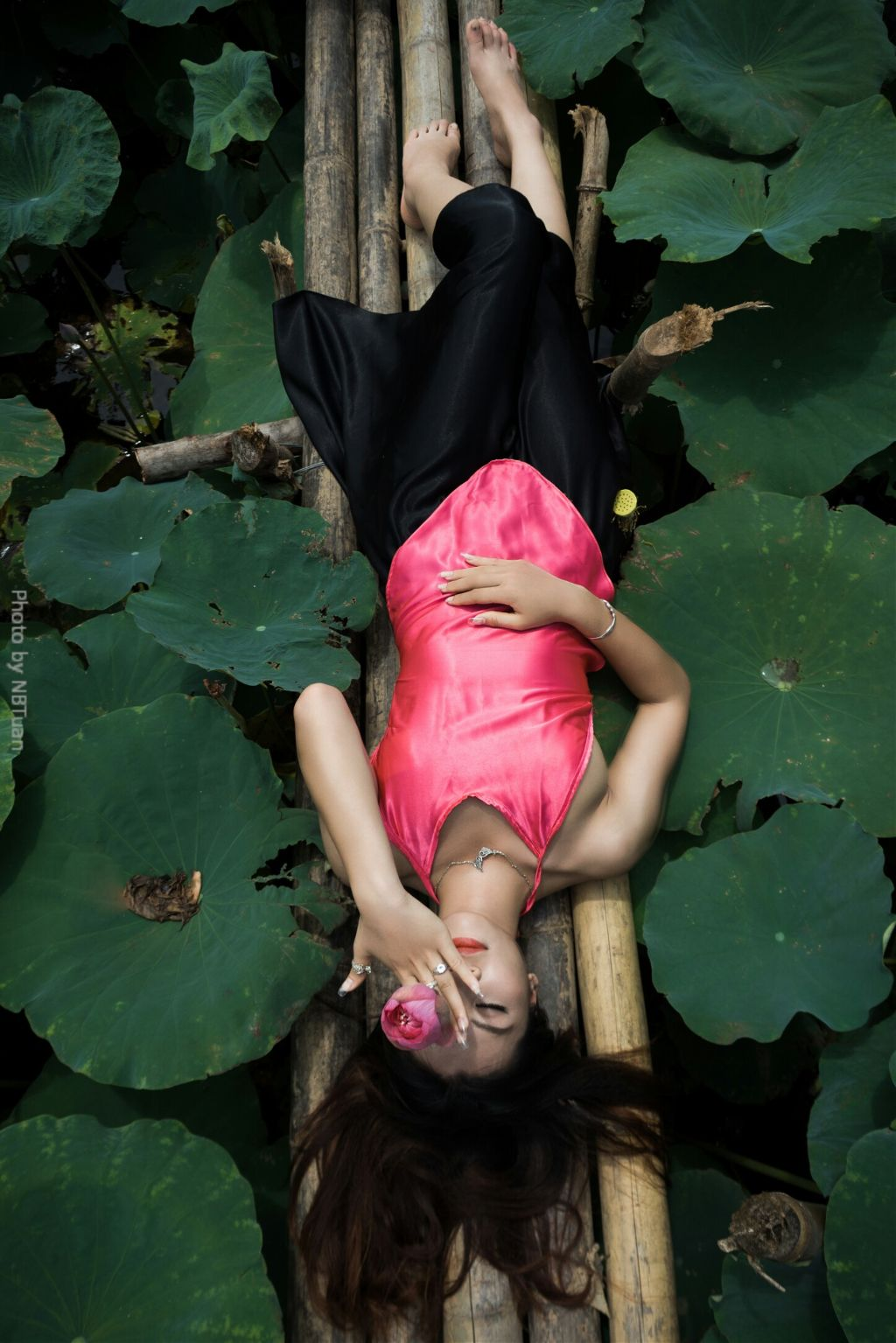 #nature #summer #Lotus #flower #girl #color #canon