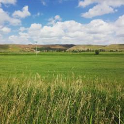 horizon sky clouds green field freetoedit