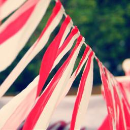 flag indonesia indonesia_photography freetoedit indonesian