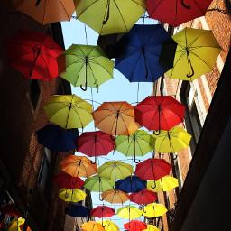 pccolorful colorful pcumbrellas umbrellas interesting wppprimarycolors dpcfavoritephoto pcmyfavphoto pcphotooftheday pcumbrellasisee pccolorfestival pcmyfavshot freetoedit worldphotographyday