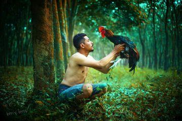 bokeh emotions cute nature love